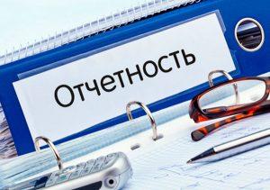 Бухгалтерская отчетность предприятий на УСН