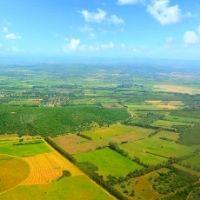 Налоговая служба разъяснила особенности применения налоговой ставки в отношении земельных участков под ИЖС